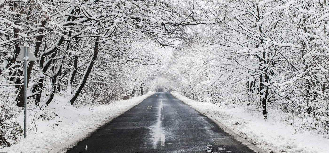Winter Gritting Services available from Twig Group