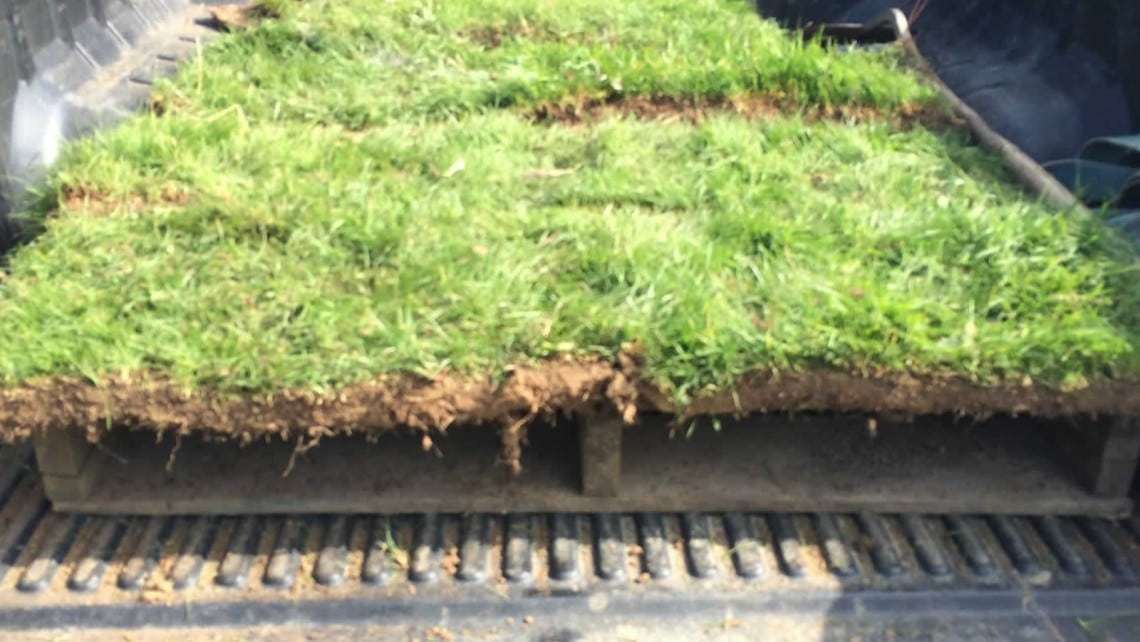 Specialist turf lifting for Clancy Docwra - Twig Ecological Services