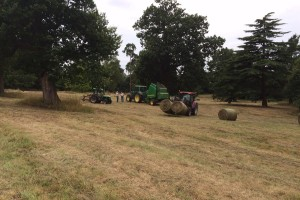 Estate Management at Calverley Park, Kent
