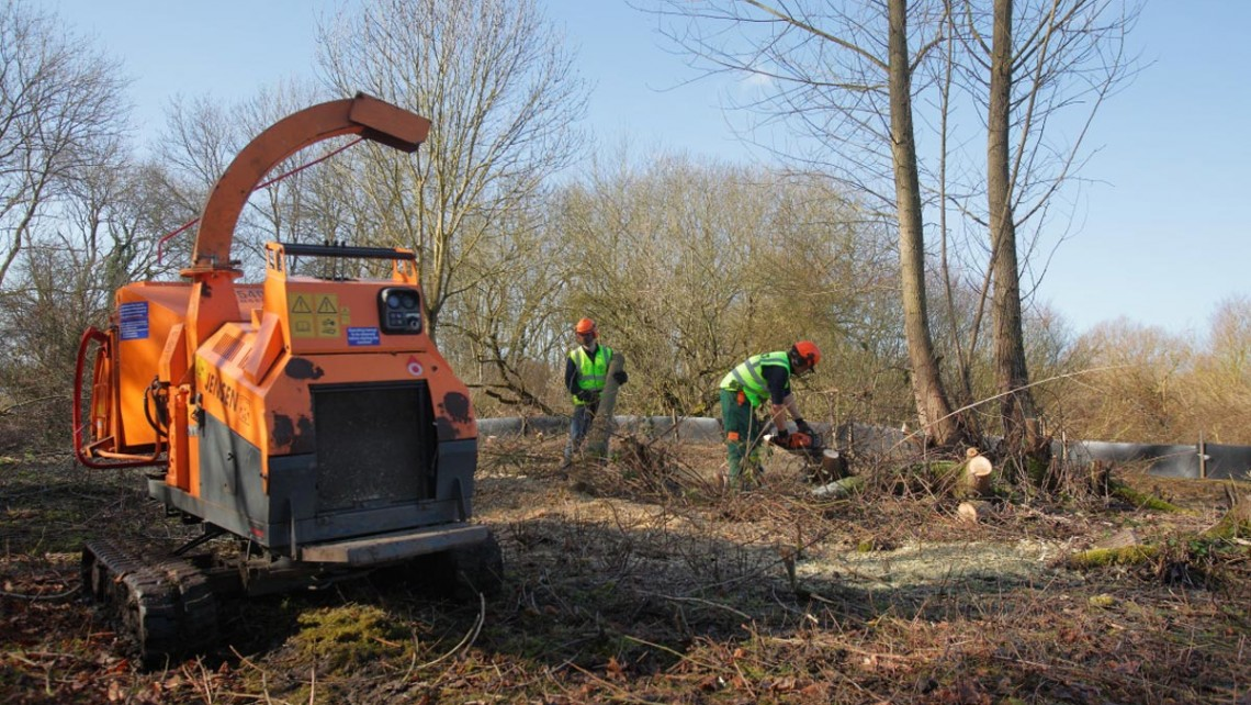 Tree felling and brush clearance at Leybourne Lakes, Burham