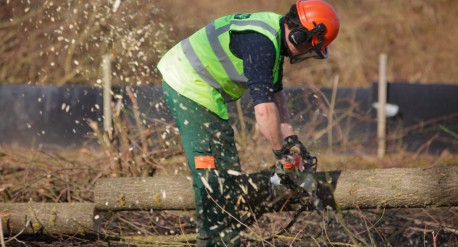 Tree clearance at Leybourne Lakes, Burham
