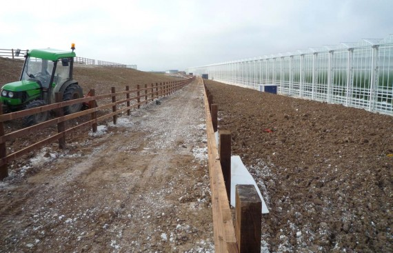 Thanet Earth Landscaping project, Kent
